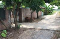 Chính chủ cần bán đất trang trại tại Xã Hiệp Thuận Phúc Thọ Hà Nội